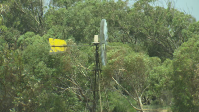 windmill spins in paddock with bushland in background zoom in to closer shot head of windmill