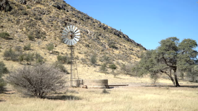 Windmill used to pump water  for livestock