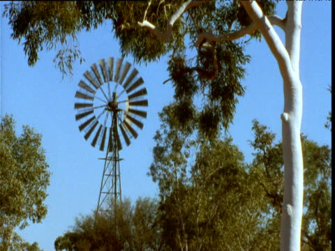 windmill water pump spins among gum trees in outback, alice springs, australia - water pump stock videos & royalty-free footage