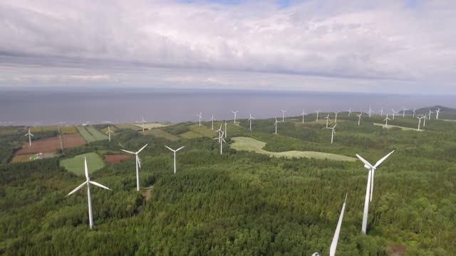 PAN of windmills on windless day