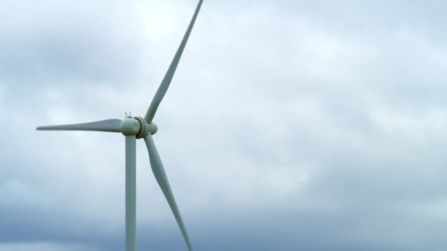 windmills - social issues video stock e b–roll