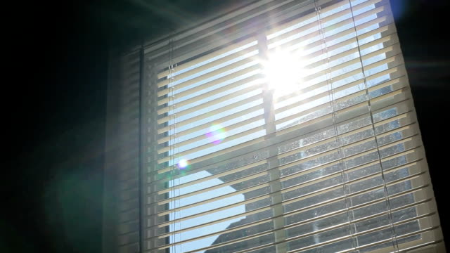 window blind and sunlight - jalousie stock-videos und b-roll-filmmaterial