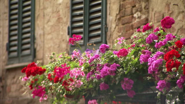 Window boxes decorate an apartment balcony. Available in HD.