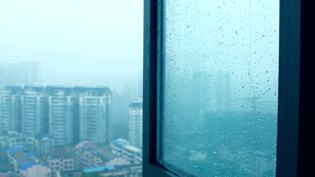 window open in the rain - sash window stock videos and b-roll footage