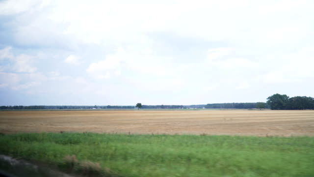 window view from train: dry crop area is out of harvesting season in summer, at Kromlau, Germany