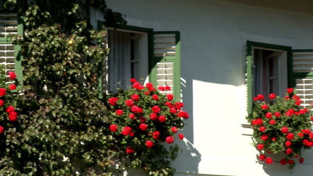windows with hanging flower boxes - window box stock videos & royalty-free footage