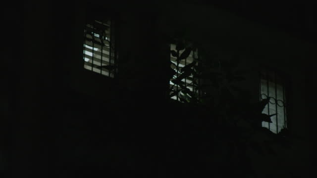 windows with security bars on a building next to a mumbai station from which is emanating a platform announcement are covered by a leaves of a tree swaying in the breeze at night, maharashtra, india. - shutter stock videos and b-roll footage