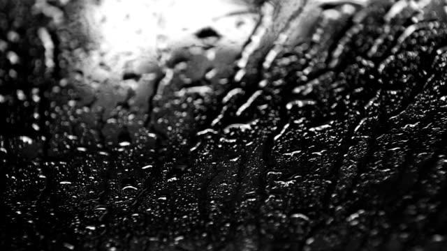 vidéos et rushes de pare-brise de la pluie - buée