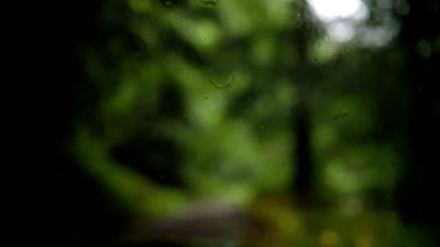 windschutzscheibe des geländewagens während der fahrt bei regen - windschutzscheibe stock-videos und b-roll-filmmaterial