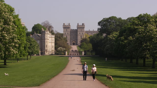 windsor castle from the long walk in windsor, england. - music or celebrities or fashion or film industry or film premiere or youth culture or novelty item or vacations stock videos & royalty-free footage