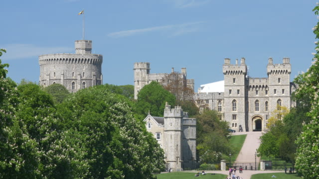 windsor castle viewed from home park - windsor castle stock videos & royalty-free footage