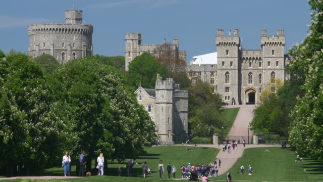 windsor castle viewed from home park. - britisches königshaus stock-videos und b-roll-filmmaterial
