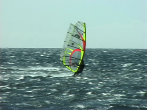 windsurfing in hawaii - maui stock videos & royalty-free footage