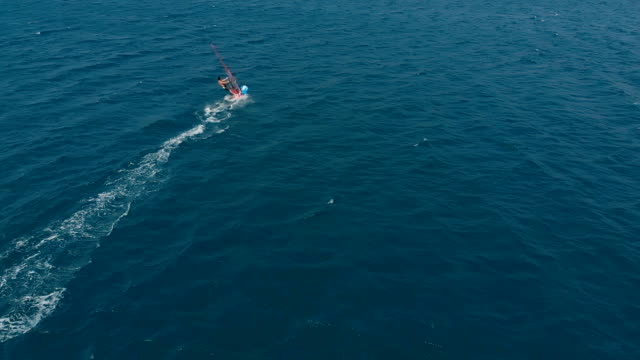 windsurfing slow motion - windsurf video stock e b–roll