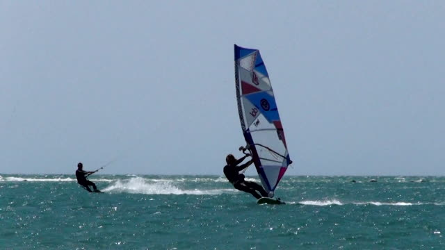 windsurfing - silvestre stock videos & royalty-free footage