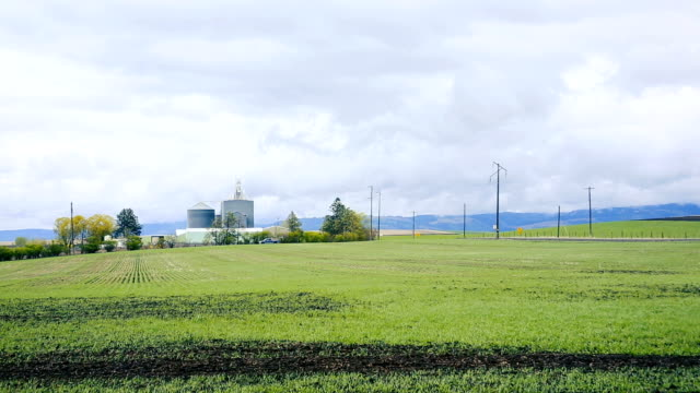 vidéos et rushes de champ de vent ferme - silo