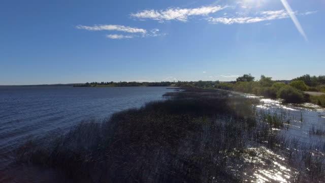 windy lakeshore - seeufer stock-videos und b-roll-filmmaterial