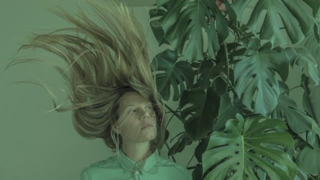 vídeos y material grabado en eventos de stock de ánimo viento - levitación