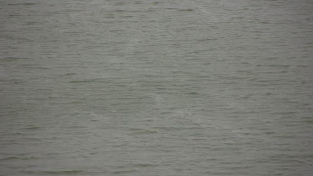 Windy Water