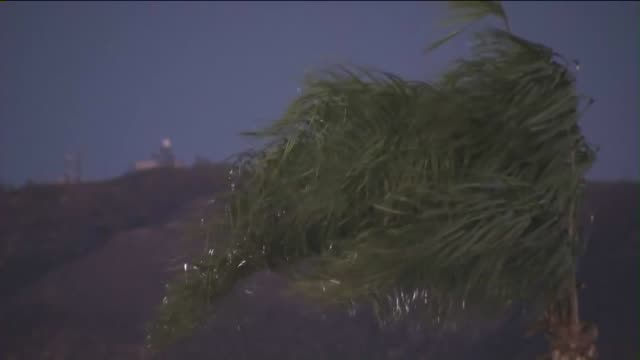 ktla windy weather in canyon country - santa clarita stock videos and b-roll footage