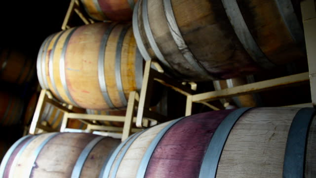 wine barrel aging room at winery - oak stock videos and b-roll footage