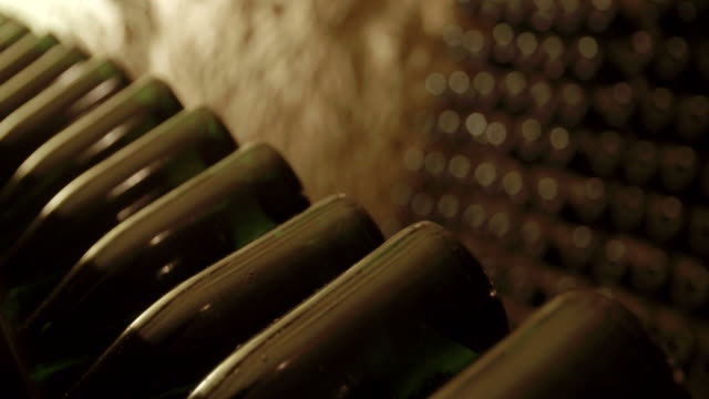 Wine bottles in a cellar / Loire, France