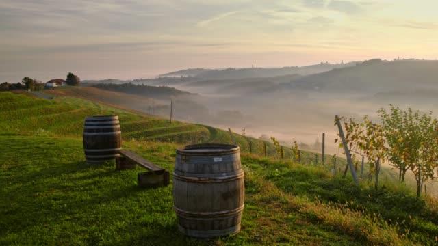 ms wine cask on lawn overlooking tranquil, idyllic rural landscape, jeruzalem, slovenia - wine cask stock videos and b-roll footage