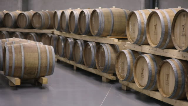 wine cellar full of wine casks - wine cask stock videos and b-roll footage