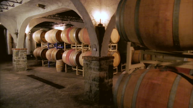 ms, wine cellar, marlboro, new york state, usa - wine cellar stock videos and b-roll footage