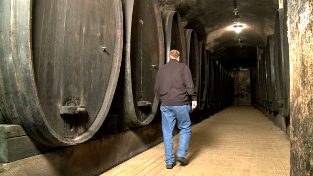 wine cellar - wine cask stock videos and b-roll footage