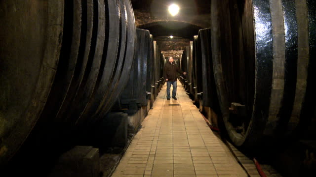 wine cellar - wine cellar stock videos and b-roll footage