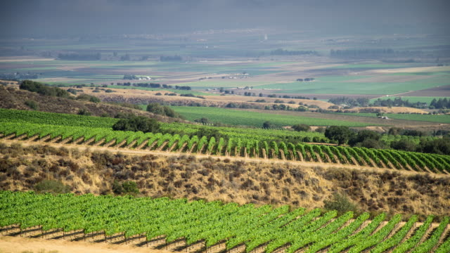 Wine Country Scenics - Time Lapse
