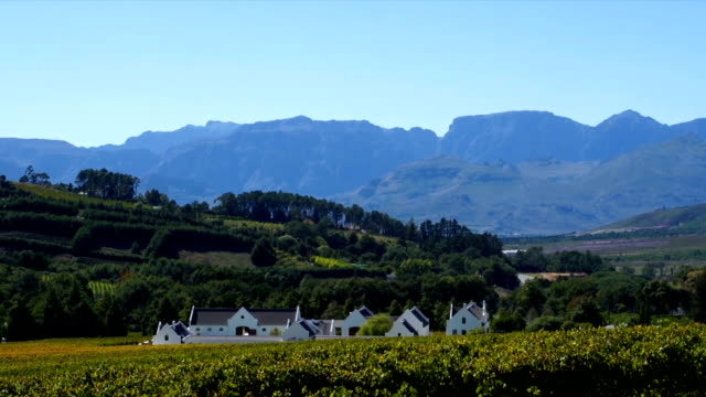 ws pan  wine estate and vineyards /  franschhoek/ western cape/ south africa - franschhoek stock videos and b-roll footage