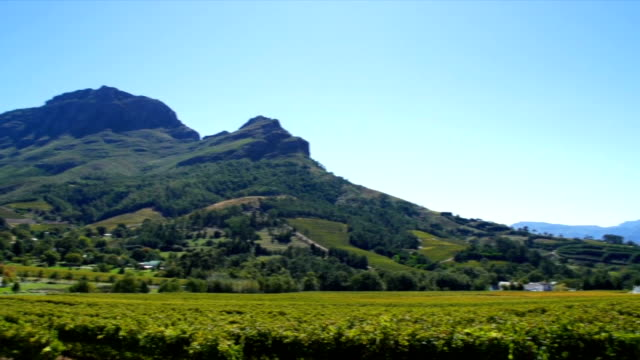 ws zo  wine estate and vineyards /  franschhoek/ western cape/ south africa - franschhoek stock videos and b-roll footage