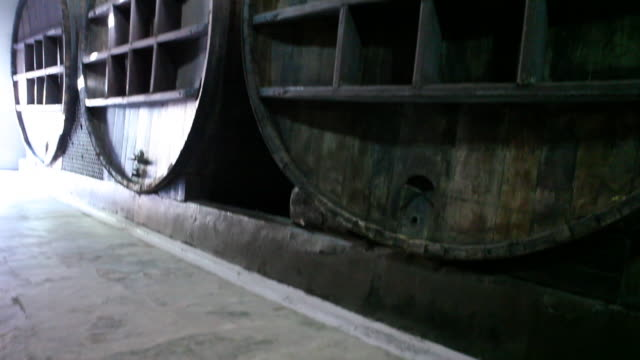 wine press in mendoza - argentinian culture stock videos & royalty-free footage