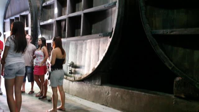 wine press in mendoza - argentinian culture stock videos & royalty-free footage