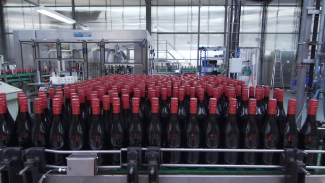 wine production filled wine bottles in raw timelapse - bottling plant stock videos and b-roll footage