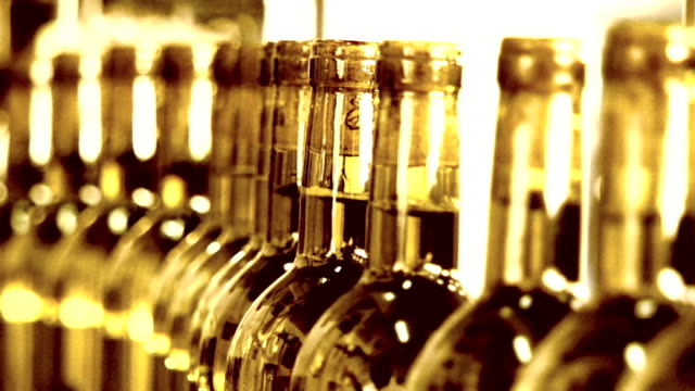 wine production - bottling plant stock videos and b-roll footage