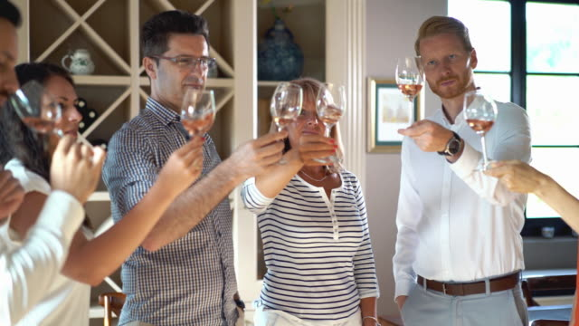 wine tasting, 4k. - rose wine stock videos and b-roll footage