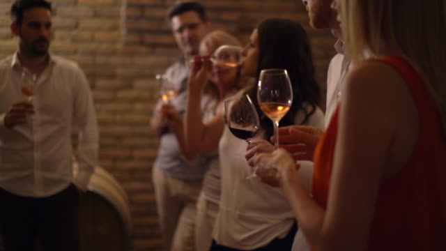 wine tasting in a wine cellar, 4k. - rose wine stock videos and b-roll footage