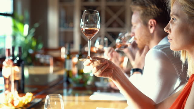 wine tasting. - side by side stock videos & royalty-free footage
