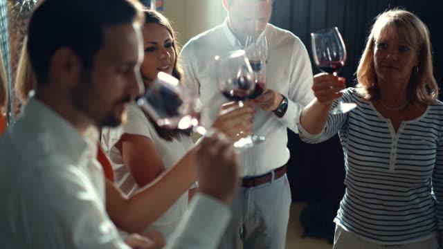 vídeos de stock, filmes e b-roll de degustação de vinho. - analysing