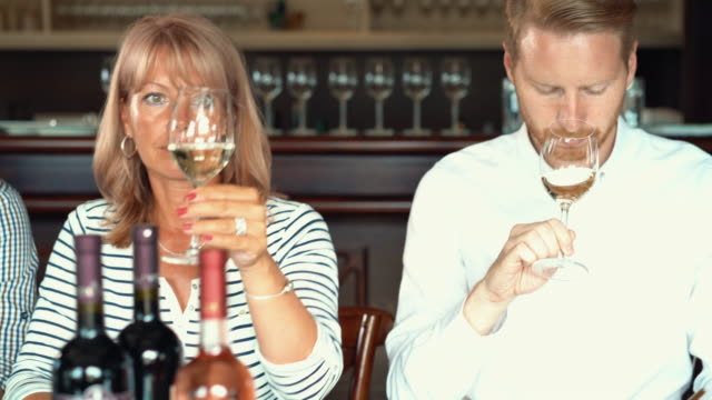 wine tasting. - rose wine stock videos and b-roll footage