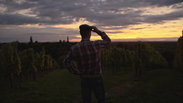 Winegrower Fuß in die Weinberge in der Dämmerung