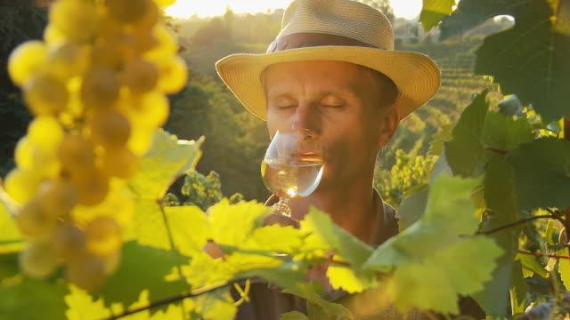HD: Winemaker Tasting Wine In Vineyard
