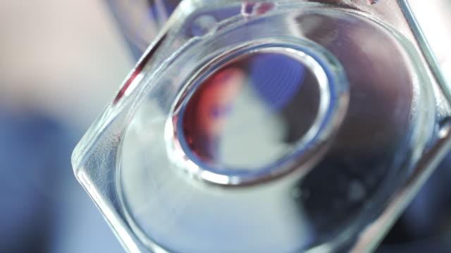 winery laboratory slow motion - pallone di vetro video stock e b–roll
