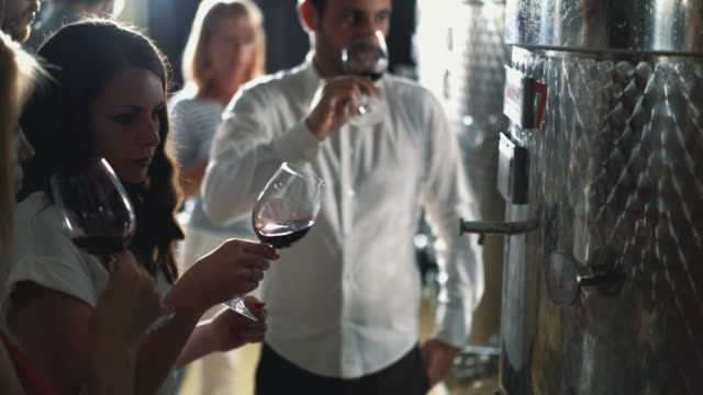 winetasting in a wine cellar. - wine stock videos & royalty-free footage