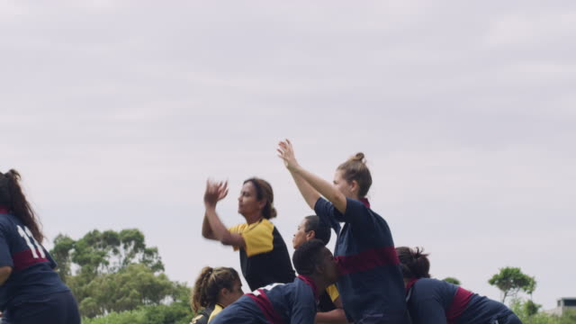 winning the lineout - rugby stock videos & royalty-free footage