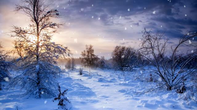 winter a snow animation - stavanger, norway - cinemagrafi bildbanksvideor och videomaterial från bakom kulisserna
