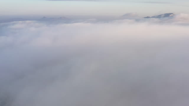 winter alpine wonderland - pinaceae stock videos & royalty-free footage